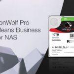 IronWolf-Pro_767x290_SPP_GB