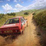 dirt-rally-2.0-11