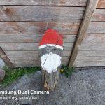 Galaxy A40 kamera (1)