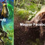 facebookos 2