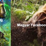 facebookos 2.1